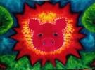 Piggypalooza 8!