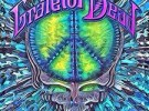 tie dye Camping Chair OFFICIALLY LICENSED BY THE GRATEFUL DEAD
